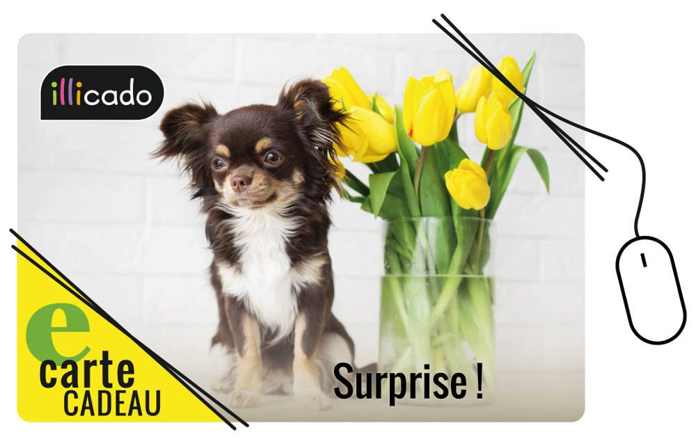 la e-carte pour faire un cadeau-surprise !